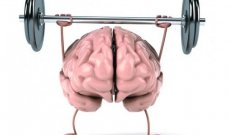 فوائد الرياضة على العقل والتركيز والذاكرة